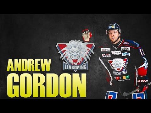 Andrew Gordon   Linköpings HC 2015/2016   SHL  