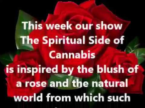 The Spiritual Side of Cannabis s2 e114