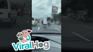 Awkward Way to Carry Cargo || ViralHog