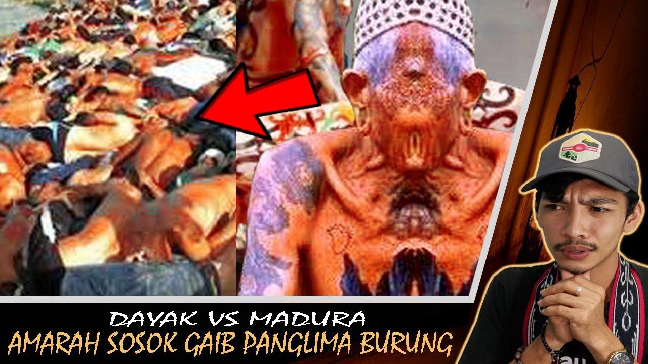 Download Tragedi Perang Sampit BANJ1R DAR4H - Dayak vs Madura II Perang Sampit!