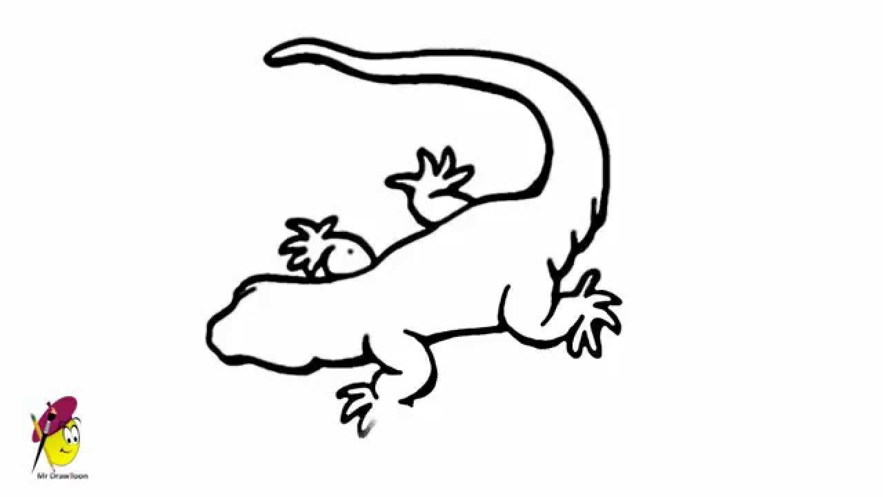 Gecko Easy Drawing How To Draw A Gecko Youtube