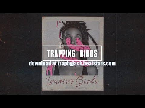 """[free]-drake-x-travis-scott-ft.-big-sean-type-beat---""""trapping-birds"""""""