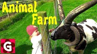 Kids having fun at Animal Farm