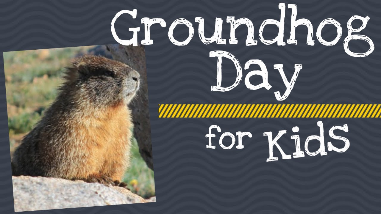 hight resolution of Groundhog Day for Kids - YouTube