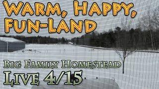 Big family homestead live stream April 15th