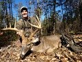 Big Buck Down In North Carolina