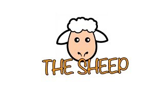 The Sheep | Ballymena Academy