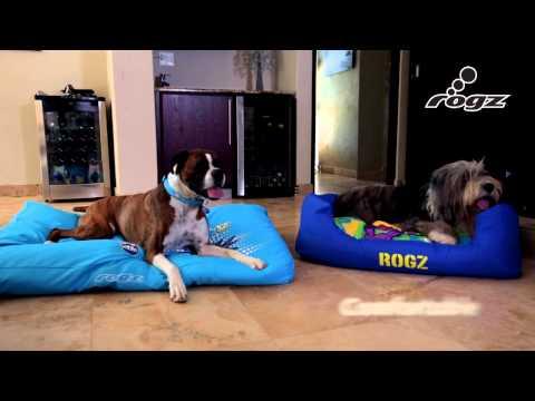 Dogz Spice & Flat Podz Roovie