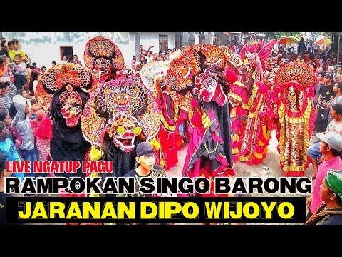 Rampokan Singo Barong Jaranan Dipo Wijoyo Live Ngatup Pagu---Rame Barongnya