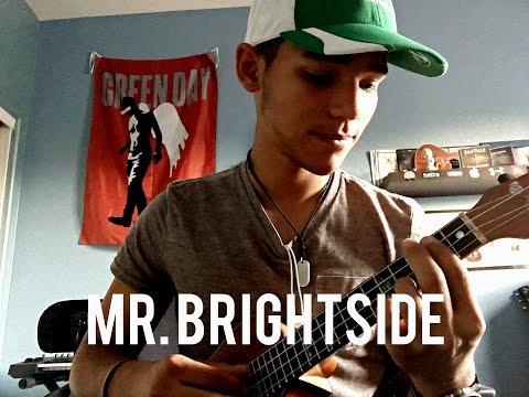 Mr. Brightside--the Killers (ukulele Cover)