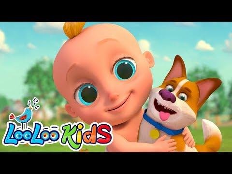 🐶 Bingo - LooLoo Kids Nursery Rhymes For Kids