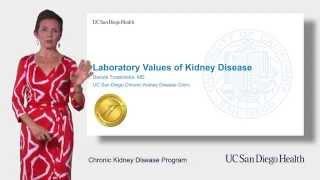 Kidney Disease: Understanding Your Lab Values