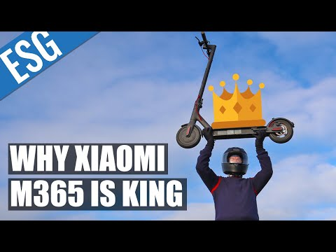 Why the Xiaomi M365 is the Most Popular Scooter in the World   Xiaomi Mi M365 Review