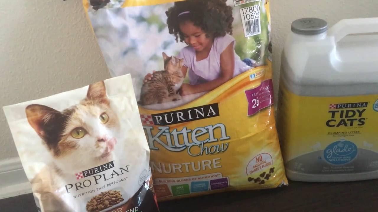 My New Kitten Jubilee How I Got A Free Adoption Starter Kit From