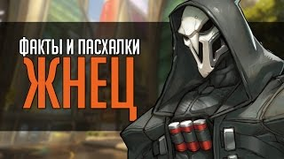Overwatch ФИП Факты и пасхалки Жнец