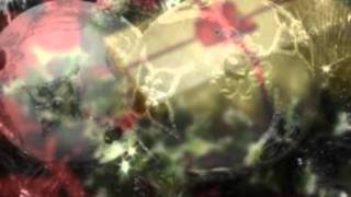 magdalena pluma hidalgo oaxaca feliz navidad de parte de lalo loga
