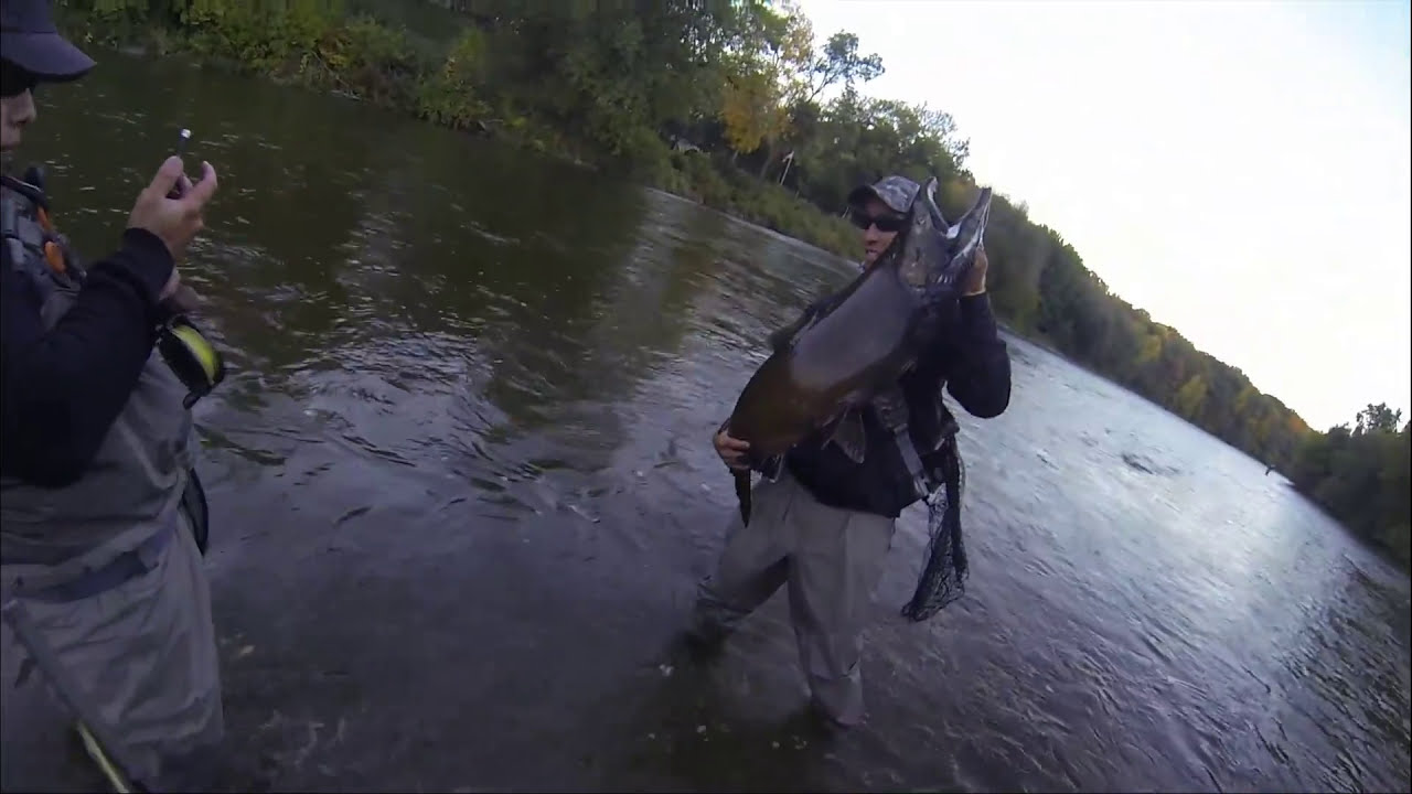 Milwaukee river fly fishing october 2013 youtube for Milwaukee river fishing report