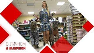 Товары для больших и маленьких собак.  Гипермаркет  для животных.