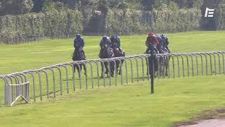Vidéo de la course PMU PRIX SANCTUS