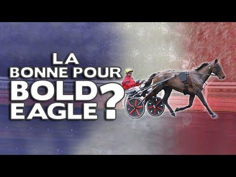 Bold Eagle triomphera-t-il au Grand Prix de France ?