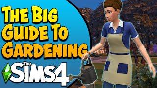 The Sims 4 Gardening Guide (Seasons/Base Game)