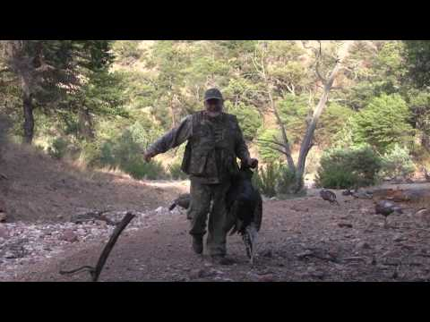 2017 Goulds Turkey Hunting In Mexico With GouldsTurkeyHunt.com Highlights Part 2