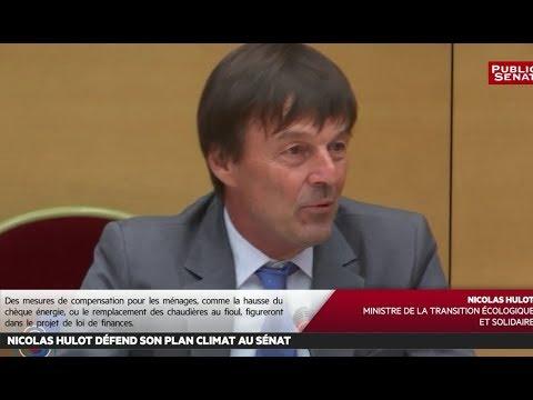 Nicolas Hulot défend son plan climat au climat - Les matins du Sénat (14/07/2017)