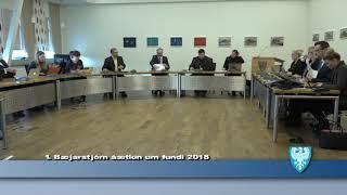 Fundur Bæjarstjórnar 20. febrúar 2018