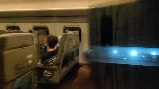 はやぶさ44号 E5系 盛岡発車から新花巻通過まで 右側車窓
