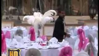 Making OF Wedding Party Concord EL Salam .wmv