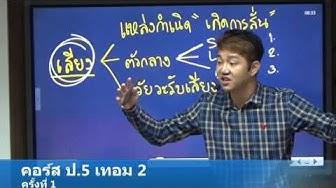 PP04 วิทยาศาสตร์ ป.5 เทอม 2 (60)