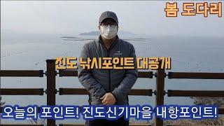 진도 낚시 포인트 공개…