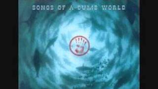 Species Of Fishes - Numb World