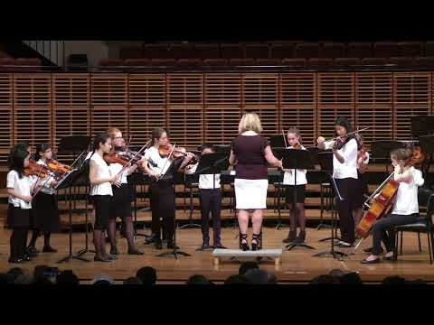 Sydney Youth Orchestra BRAHMS Group End-Of-Year Performance 2017
