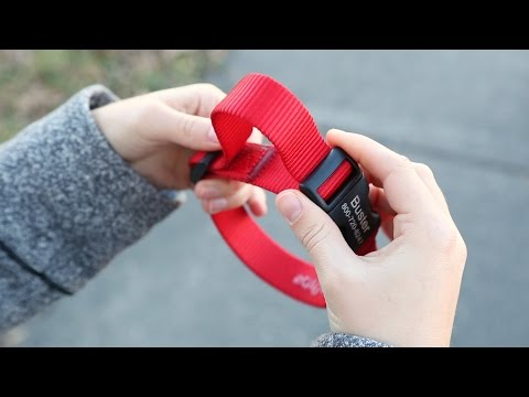 How To Adjust Your Nylon Dog Collar