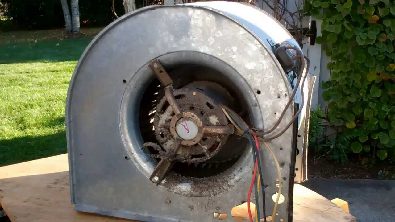 American standard blower motor removal part 1 of 4 youtube for Oil for blower motor