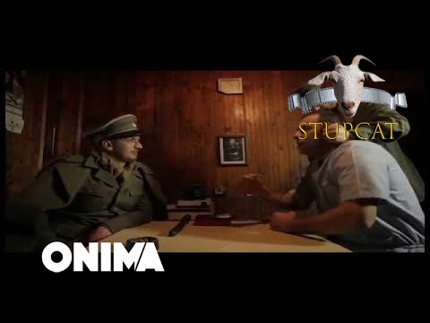Stupcat - Seriali Amkademiku (Episodi 5)