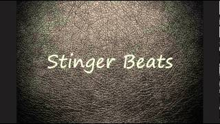 FREE Rap\Hip Hop Beat #1 (by Stinger)