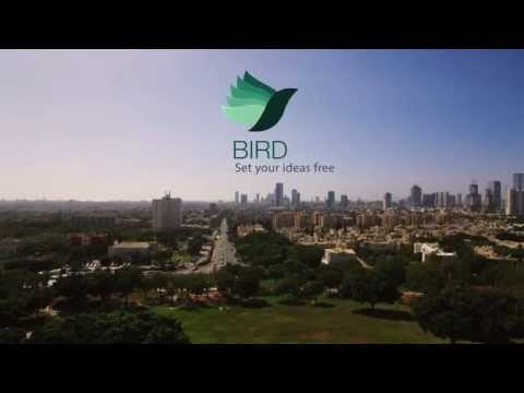 Bird helps drones fly!