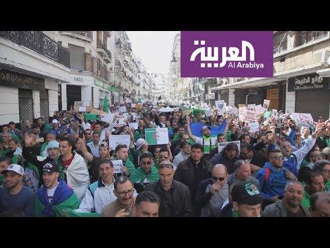 جزائريون ينتفضون على الإخوان  - 19:53-2019 / 3 / 21