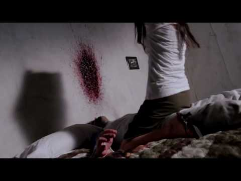 国分佐智子主演 SAKI 鮮血のアーティスト (US title:SAKI the Killer