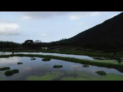 八煙- 霧靄中的田園山色 (Ba-Yien, the small village in the misty mountain)