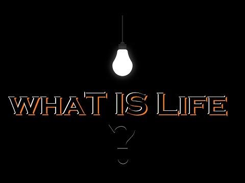 Filme Kurdi Badini - What Is Life? 2014 New Film About Life - Film By Ehsan Qasim