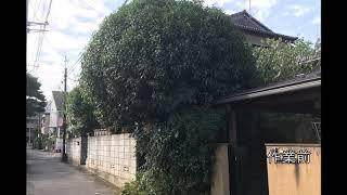 東京都立川市・国分寺市周辺で造園業を営んでいる、庭和です。 植木の剪...