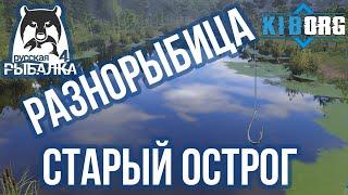Русская рыбалка 4 Старый острог Карп Лещь Линь Густера Амур