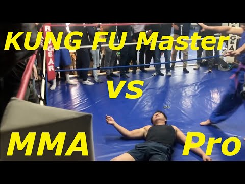 KUNG FU Master VS Pro MMA Fighter! (Nam Phan Fight Interview)