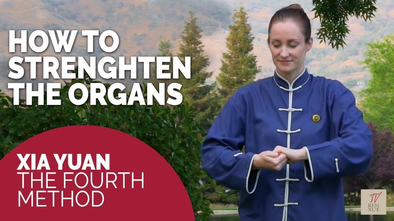 Qigong & Ren Xue resources