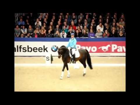 Carl Hester on Selecting A Dressage Horse
