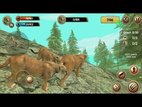 Wild Cougar Sim 3D Android Gameplay #2