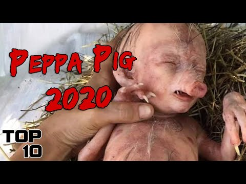 Top 10 Scary Times Peppa Pig Ruined Your Childhood